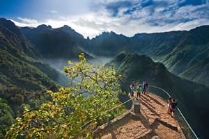 Gastronomic Getaway in Madeira